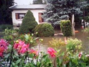 2002-2-g